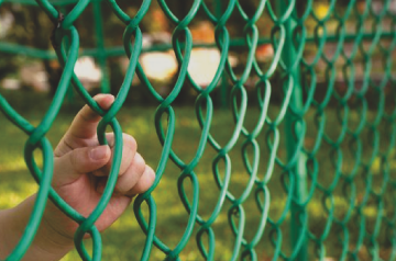 chain link fencing in spokane with green vinyl around chain link